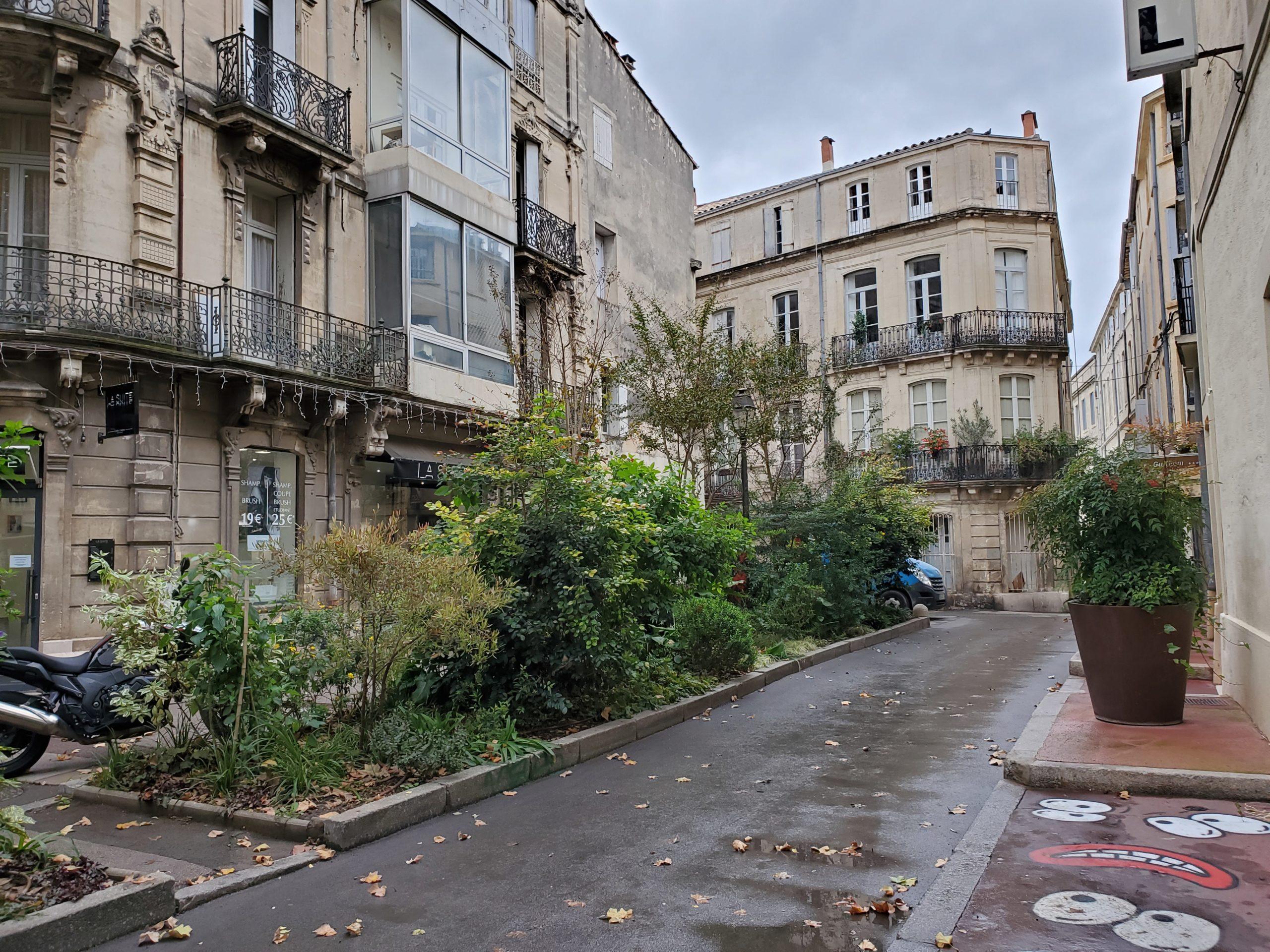 Montpellier – la vie tranquille